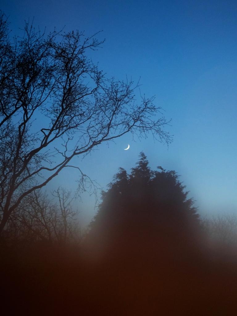 Copy of misty_moon (1)